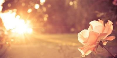 早安晨語,鼓勵人努力奮進的早安語錄!